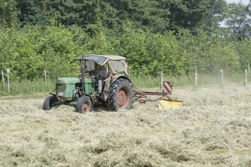 upload/newsy/2649/haymaking-2755357-1920_medium.jpg