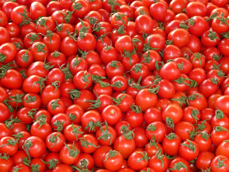 upload/newsy/2894/tomatoes-73913-1280_medium.jpg