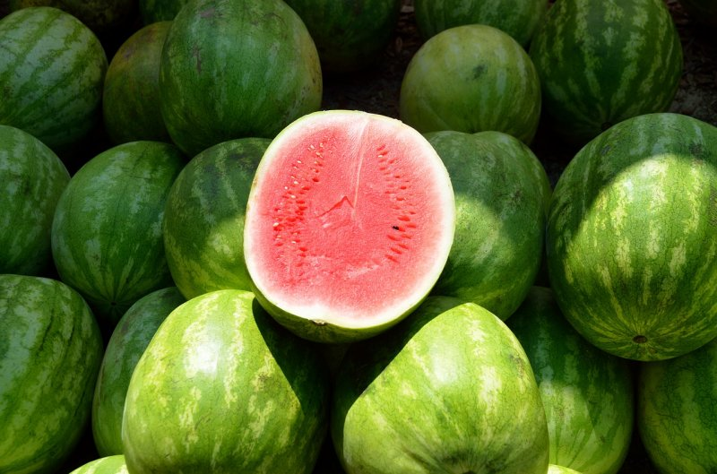 upload/newsy/3651/water-melon-1652093-1280_medium.jpg