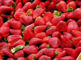 upload/newsy/3655/strawberries-99551-1280_nmedium.jpg