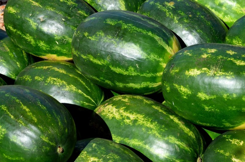 upload/newsy/3812/watermelon-3877125-1280_medium.jpg