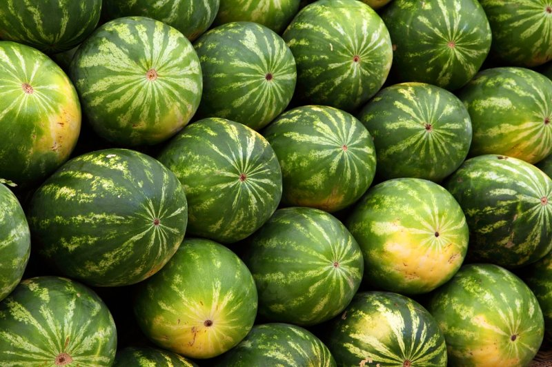 upload/newsy/3815/watermelon-2636-1280_medium.jpg