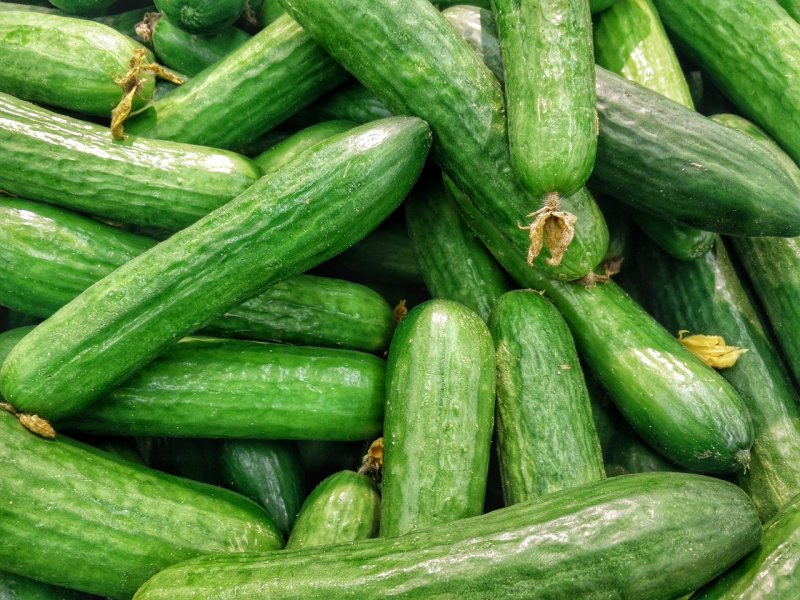upload/newsy/3922/cucumbers-1081700-1280_medium.jpg