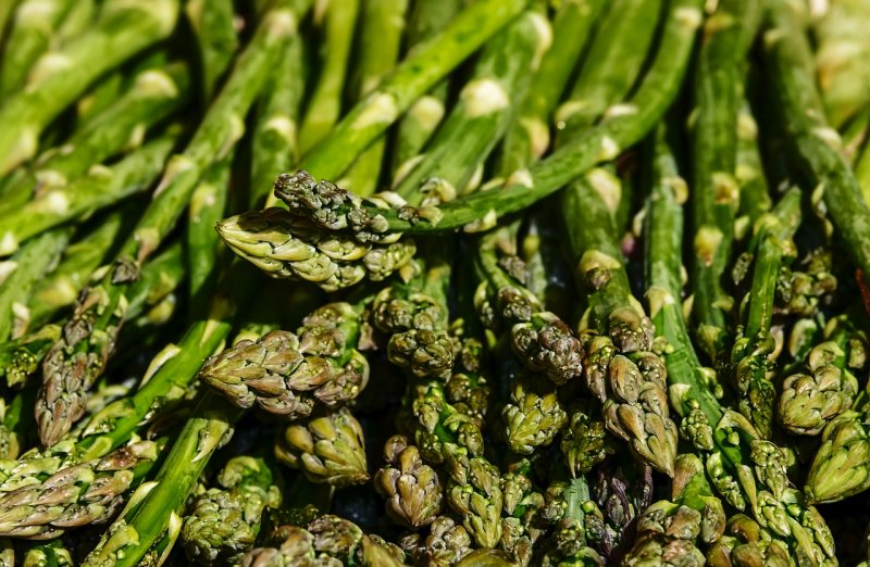 upload/newsy/4065/asparagus-3440348-1280_medium.jpg