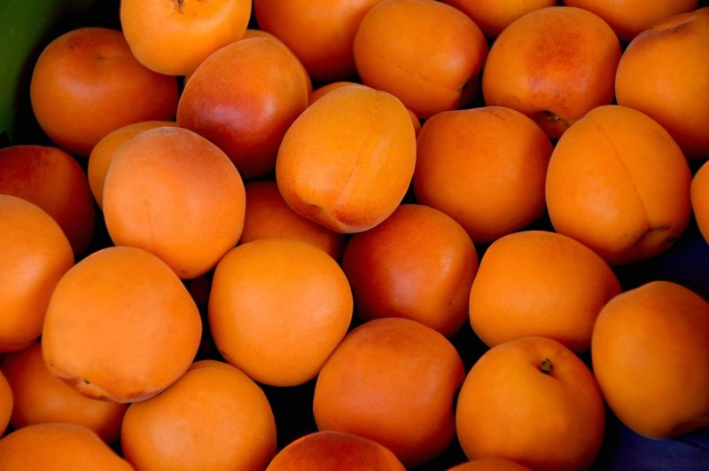 upload/newsy/4599/apricots-1509634-1280_medium.jpg