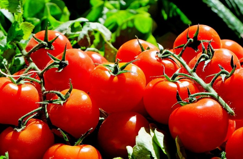 upload/newsy/4612/tomatoes-1280859-1280_medium.jpg