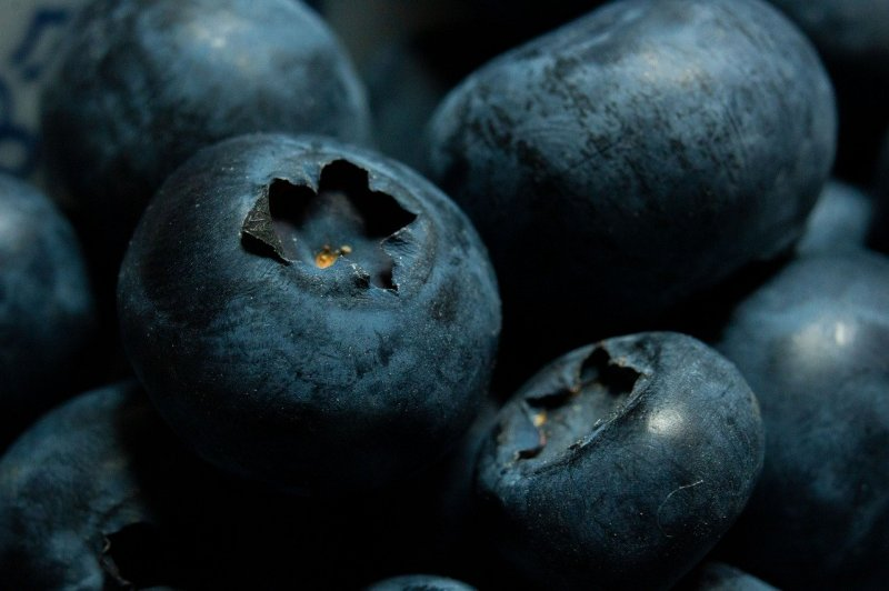 upload/newsy/4613/blueberries-5243712-1280_medium.jpg