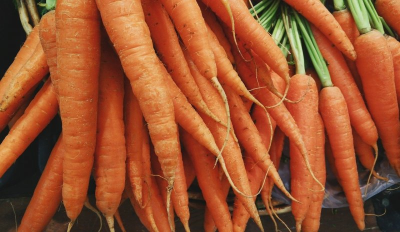 upload/newsy/4622/carrots-1082251-1280_medium.jpg
