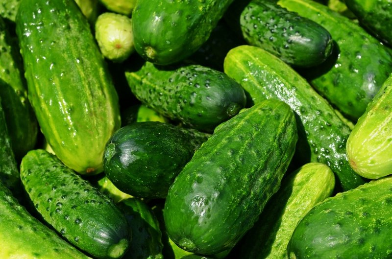 upload/newsy/4661/cucumbers-849269-1280_medium.jpg