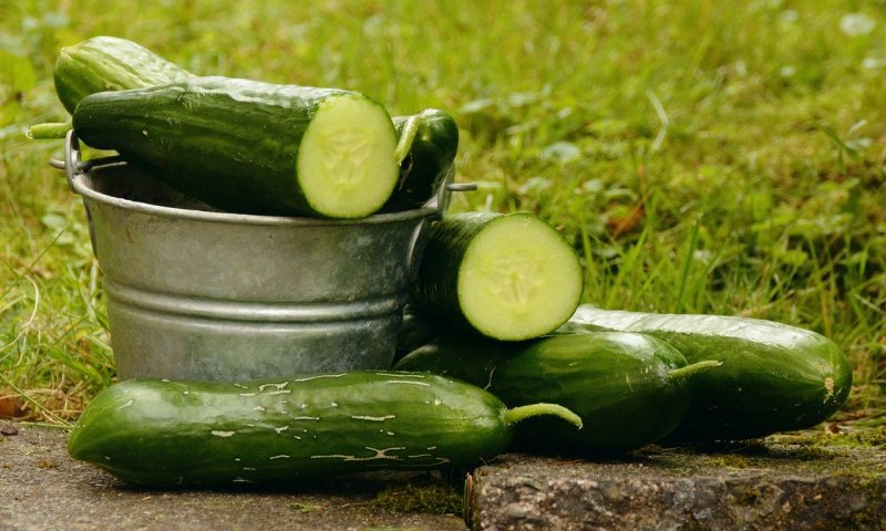 upload/newsy/4722/cucumbers-1588945-1280_medium.jpg