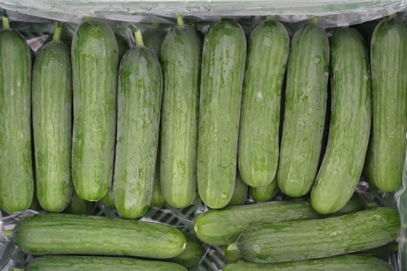 upload/newsy/4728/mini-cucumbers-2716567-1280_medium.jpg