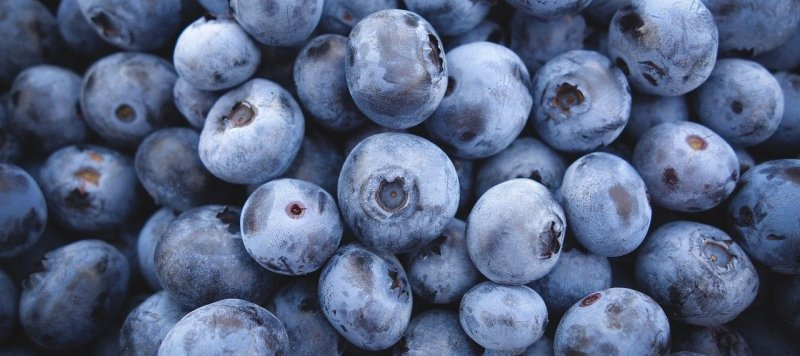 upload/newsy/5096/blueberries-3016758-1280_medium.jpg